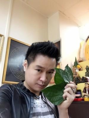 Leaf Astrology1
