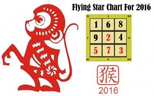 flying-star-2016